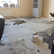 Укладка петлевого ковролина в офисе