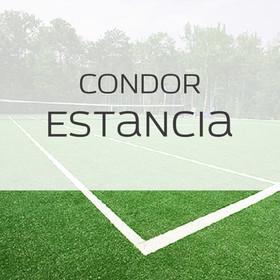 Фото Спортивная трава Condor Estancia