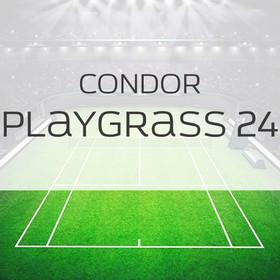 Фото Спортивная трава Condor Playgrass 24