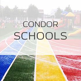 Спортивная трава Condor Schools