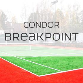 Фото Спортивная трава Condor Breakpoint