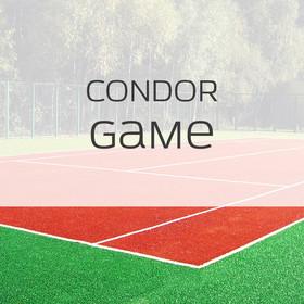 Фото Спортивная трава Condor Game