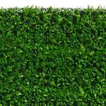 Фото Ландшафтная трава Squash BIG Цвет-0