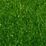 Фото Ландшафтная трава Squash BIG Цвет-1