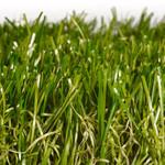 Фото Ландшафтная трава Sensa Verde Цвет-0