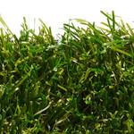 Фото Ландшафтная трава Sensa Verde Цвет-1