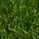 Фото Ландшафтная трава Sensa Verde Цвет-2