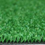 Фото Ландшафтная трава Marbella Verde Цвет-0