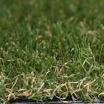 Фото Ландшафтная трава Menorca Verde Цвет-0