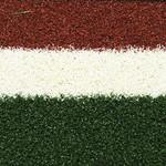 Фото Спортивная трава Condor Game Цвет-2