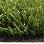 Фото Спортивная трава Condor Playgrass 24 Цвет-11