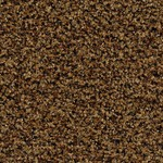 Грязезащитное покрытие Forbo Coral Brush pure/blend Грязезащитное покрытие Forbo Coral Brush pure/blend Цвет-8