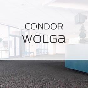 Condor Wolga