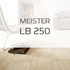 Ламинат Ламинат Meister LB 250