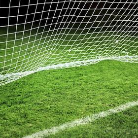 Искусственная трава Спортивная трава