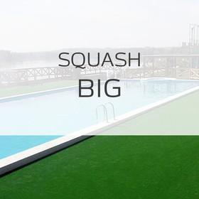 Ландшафтная трава Ландшафтная трава Squash BIG