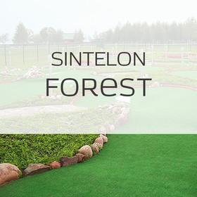 Фото Ландшафтная трава Forest Sintelon